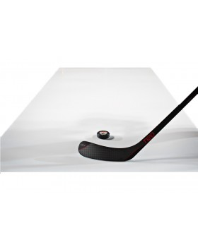 HOKEJAM.LV Large Synthetic Ice Roll